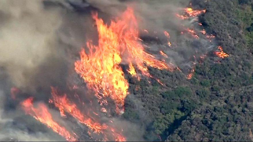 """Les flammes de """"Sand Fire"""" ravagent la Californie"""