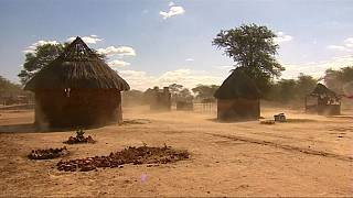 Le Zimbabwe victime d'une grave sécheresse