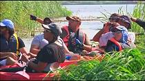 Egypt: Birdwatching along the Nile with Kayaks has become a passion