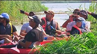 Egypte : observer les oiseaux le long du Nil avec des Kayaks devient une passion