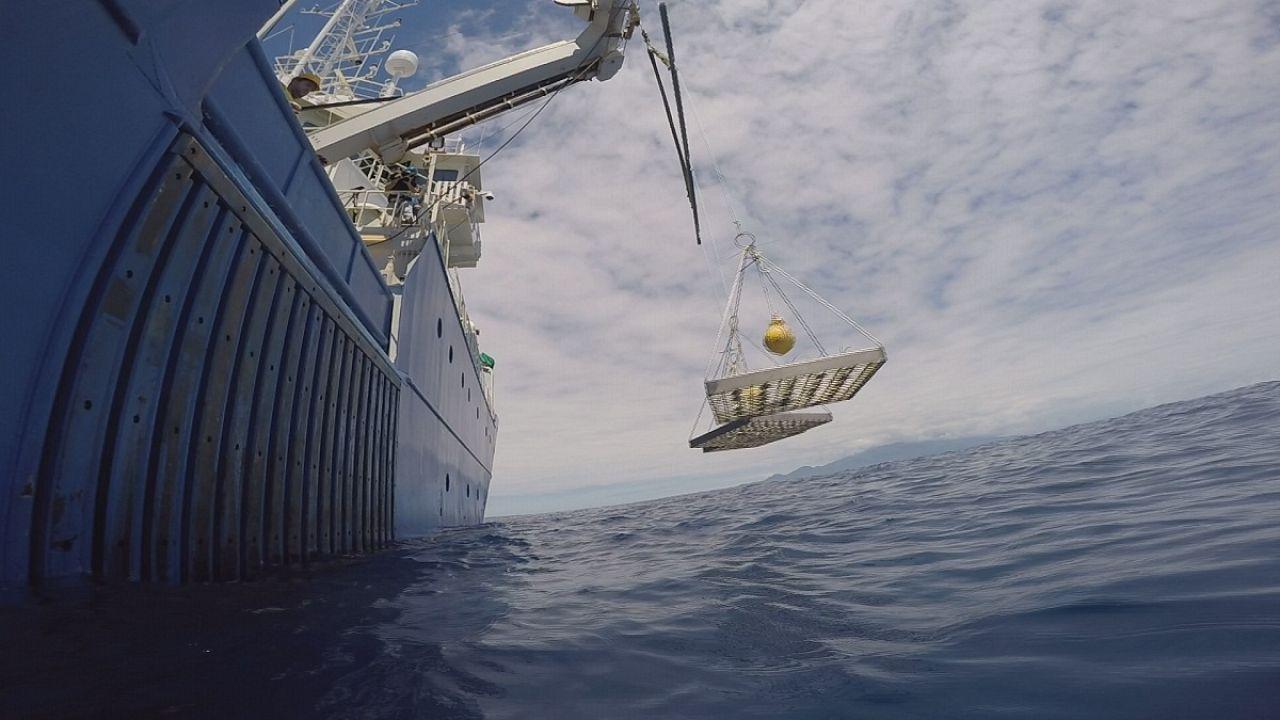 Takeaway: sea mining