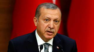 German-Turkish relations 'bumpy' after Erdogan speech ban