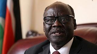 South Sudan Agric Minister resigns, says peace deal is over
