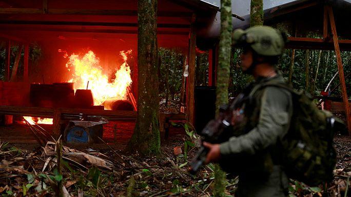 كولومبيا تدمر معامل لانتاج الكوكايين في منطقة غابات