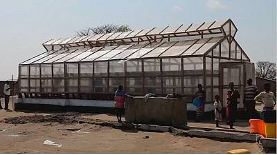 Simple technology helps Malawian traders improve fish market