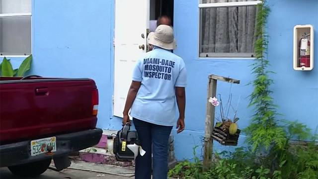 Florida'da Zika virüsüne karşı ek tedbirler