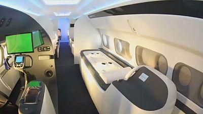 Plane maker creates custom-made jet for sportsmen
