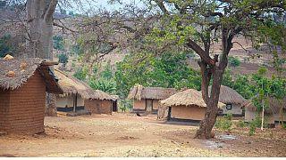 Malawi : pas de libération sous caution pour la ''hyène''