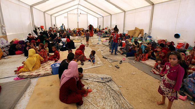 Miles de iraquíes huyen de los combates al sur de Mosul