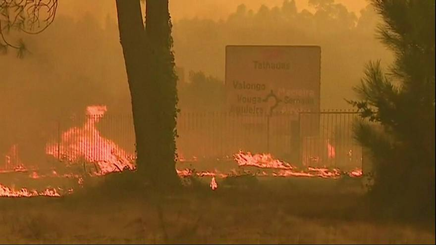 Northern Portugal declares forest fire emergency