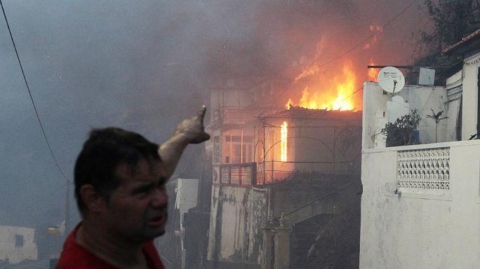 Пожары на севере Португалии и на Мадейре: один человек погиб.
