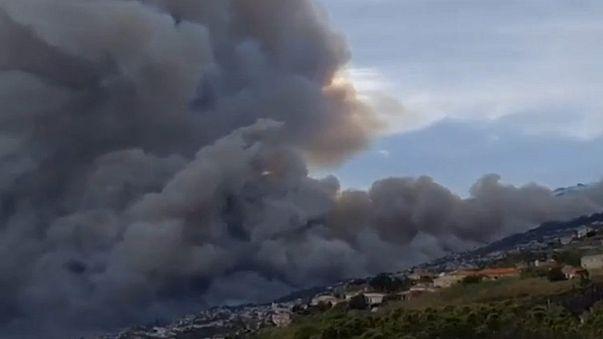 Portekiz'de orman yangını sorunu çözülemiyor
