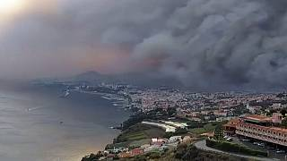 Portugal: Additional help called in as wildfires rage on