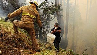 Португалия бросает все силы на тушение пожаров