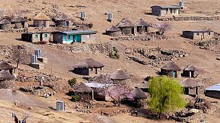 Starving in the midst of plenty: The sad tale of Lesotho's drought