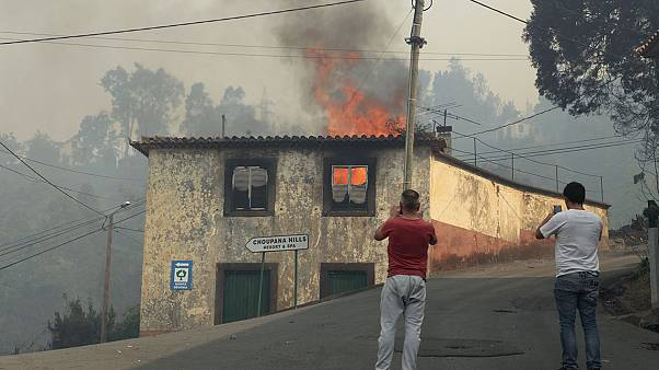 Portugal: le feu maîtrisé à Madère mais les incendies continuent sur le continent