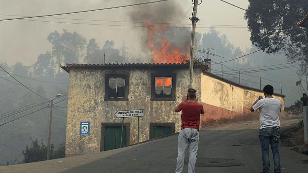 Portugal fires: Wildfires rage on mainland as Madeira counts cost