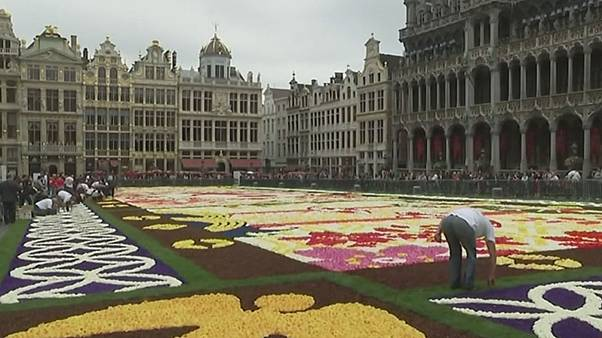 Blumen für Belgien - Gigantischer Blumenteppich schmückt Marktplatz