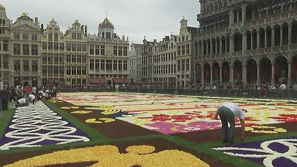 Turning Japanese: Brussels goes bonkers for begonias