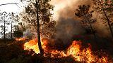 Le Portugal et l'Espagne face aux feux qui persistent