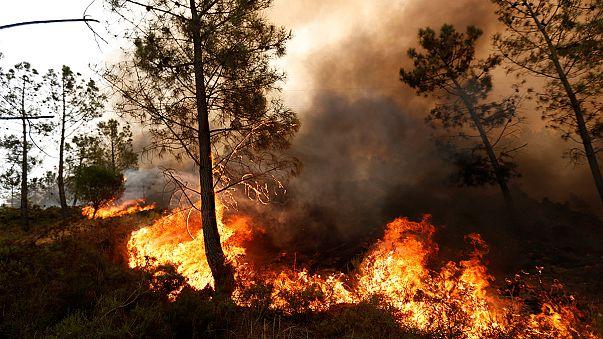 Самолеты МЧС России тушат пожары в Португалии