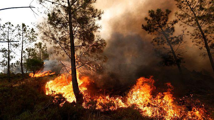 روسيا ترسل طائرتي إطفاء حرائق إلى البرتغال