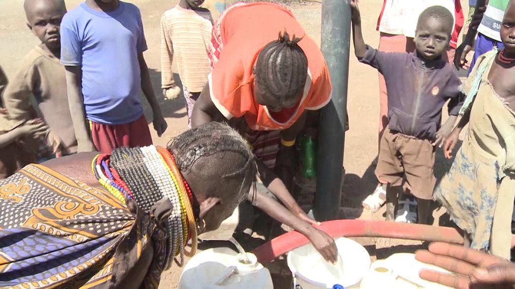 Kenya'da mülteciler için tarım programı