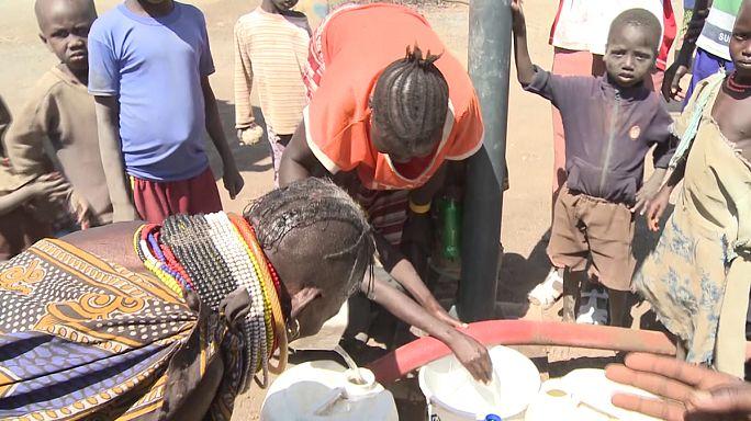 لاجئون من جنوب السودان في كينيا يعيلون أنفسهم من خلال الأعمال الزراعية