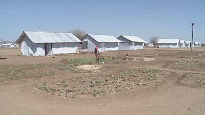 Kenya : l'agriculture pour aider les réfugiés sud-soudanais à s'auto-subvenir