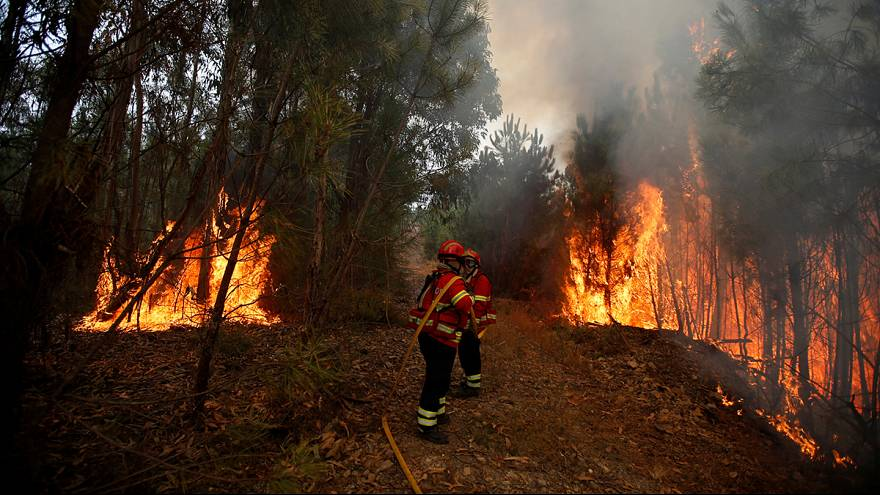 Portuguese firefighters continue to battle wildfires