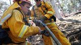 Un incendio forestal arrasa un centenar de casas en California