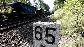 Iniciada la excavación en Polonia para encontrar el tren del tesoro nazi