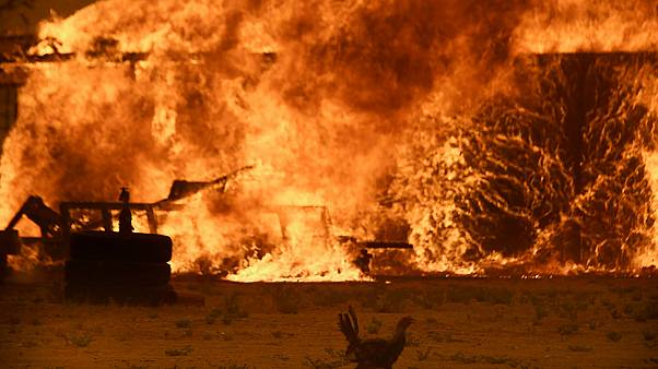 Wildfire near Los Angeles forces 80,000 people to evacuate