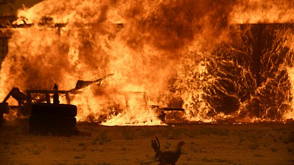 USA: brucia la costa occidentale