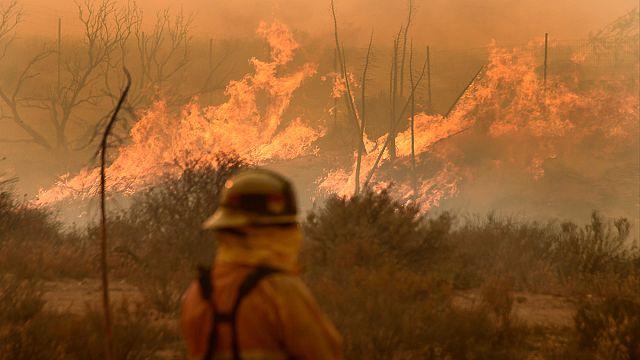 Mérföldnyi területeket pusztít el az erdőtűz egy széllökés hatására Kaliforniában