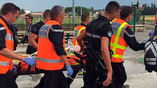 Train crashes in southern France after hitting tree on the tracks