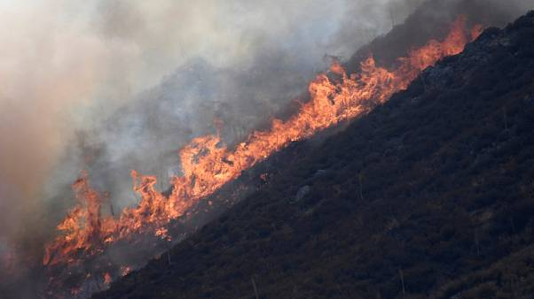 Tras cuatro días los bomberos controlan el 22% del incendio de San Bernardino, California