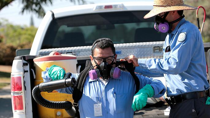 إصابة 5 أشخاص جدد بفيروس زيكا في ميامي بيتش