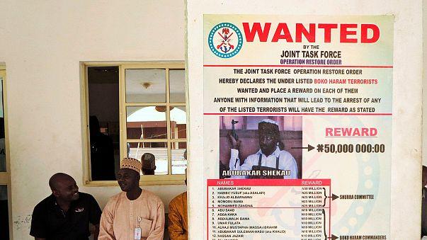 Luftangriff soll Boko-Haram-Anführer Shekau schwer verletzt haben