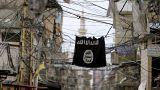 Daesh accentue sa pression sur le monde en multipliant les frappes