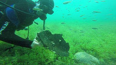 Macedonia's mysterious lake dive