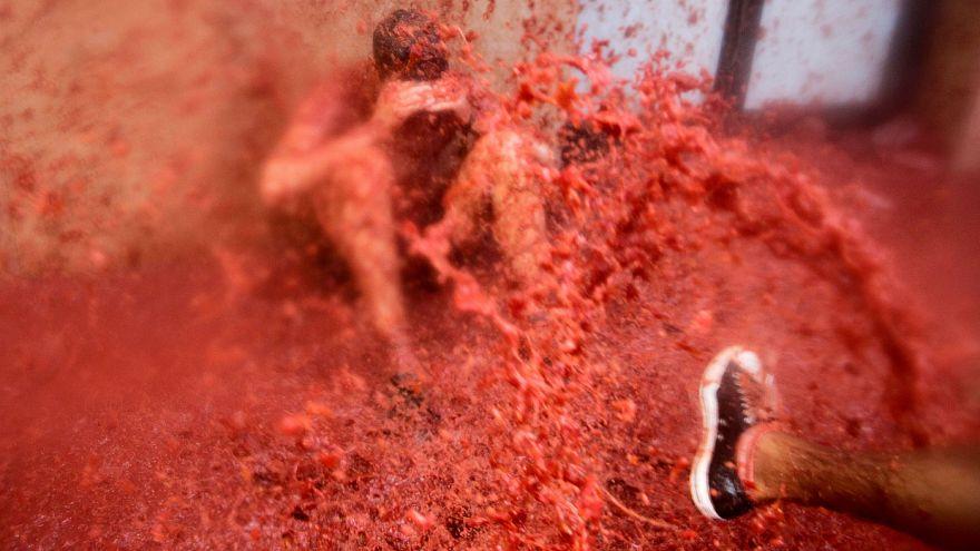 "A ""batalha"" de Tomatina!"