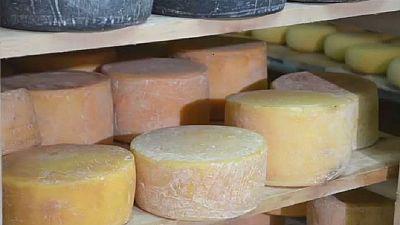 Le fromage de plus en plus présent dans les assiettes des Kényans