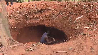 Ivory Coast: Illegal gold digging destroying cocoa plantations