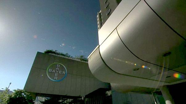 Bayer GDO'lu tohum devi Monsanto'yu satın almaya yakın