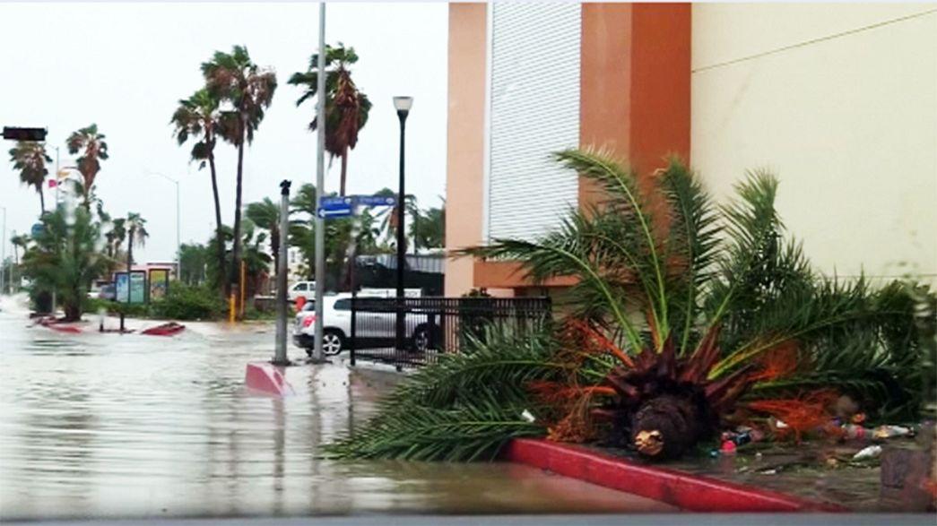 Newton Kasırgası Meksika kıyılarını vurdu