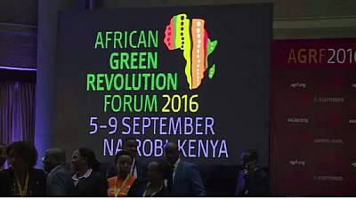 Kenya: Experts discuss strategies for Africa's Agricultural transformation