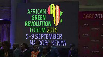 Kenya : 200 millions de dollars seront investis dans le domaine de l'agriculture