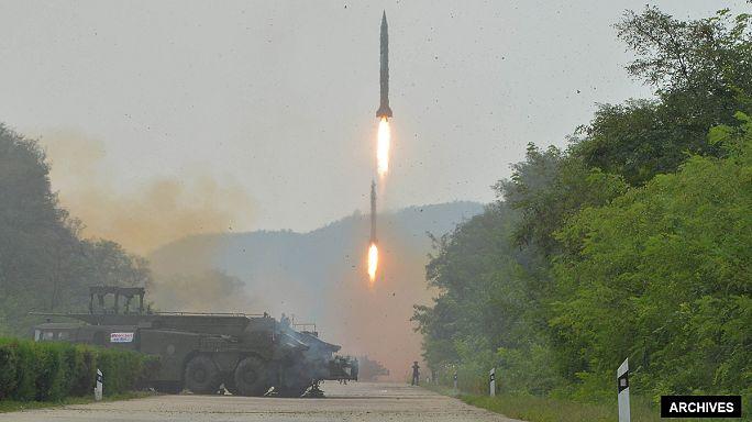 Южная Корея и Япония подозревают КНДР в проведении ядерного испытания