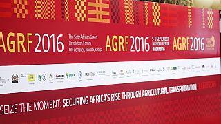 L'Afrique doit faire de la mécanisation agricole une priorité selon la BAD